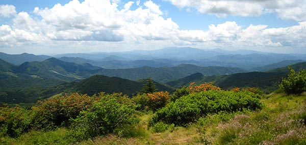View from Roan Mountain at TN/NC border