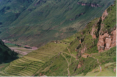 peru_terraced fields